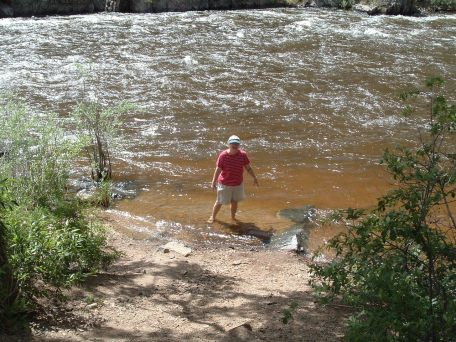 Valda Cooling Her Heels in the Yampa River